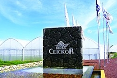 Photo showing Ceickor University entrance in Mexico