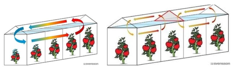 In the greenhouse to the left without baffles, a large temperature gradiant exists (blue to red arrows) and there is uneven crop growth. To the right, the greenhouse has baffles which create smaller gradiants and more even crop growth.